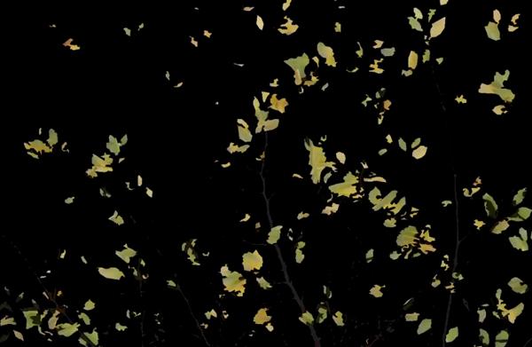 AutumnLeafes1
